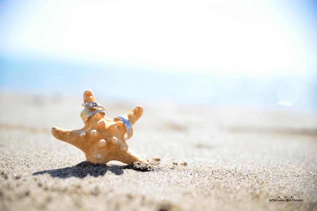 deniz yıldızı,yüzük